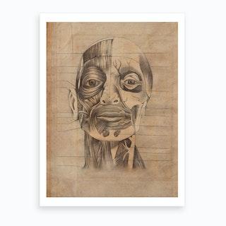 Vintage Anatomy Face Muscle Art Print