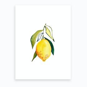 Lemon 1 Art Print