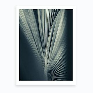 Palm Shade Vi Art Print