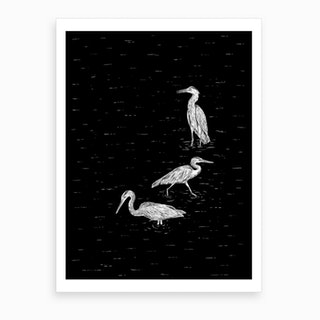 Three Herons In Black Art Print