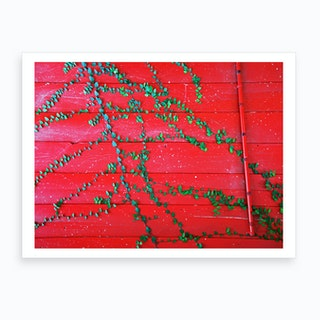 Red Wall Vines Art Print