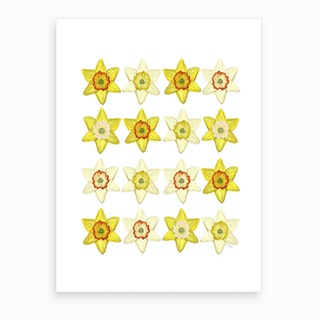 A Crowd Of Golden Daffoldils Art Print