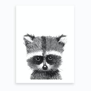 Baby Racoon Art Print