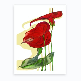 Blooming Anthurium Art Print