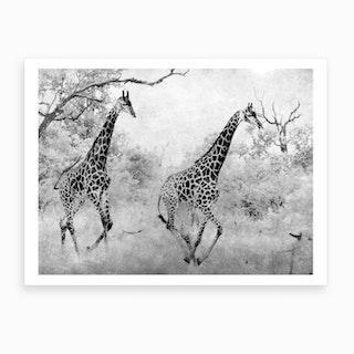 Giraffe Running Art Print