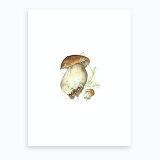 Miniature Toadstool 3 Art Print