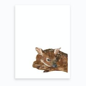 Shy Fawn Art Print