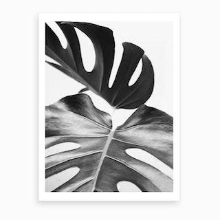 Minimalist Monstera Art Print