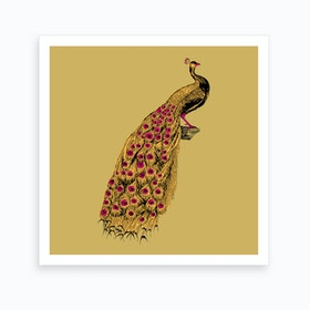 Yellow Peacock Art Print