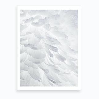 Feathers I Art Print