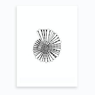 Salt And Surf   Shell Art Print