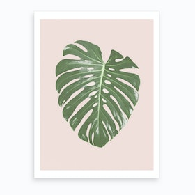 Blush Monstera Art Print