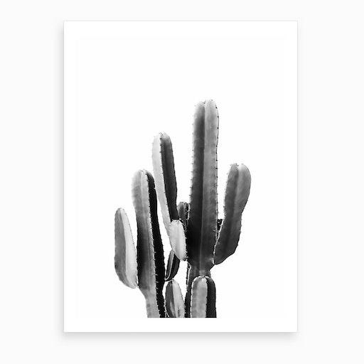 Black Cactus Art Print