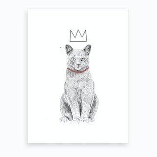 King Of Everything 2 Art Print