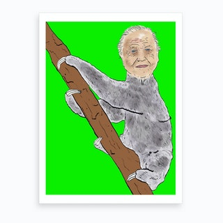 Sir David Sloth Art Print