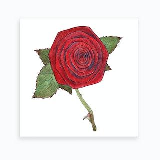 Rose 6 Art Print