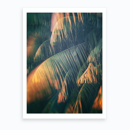 Tropical Xxiii Art Print