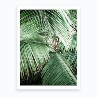Jungle II Art Print