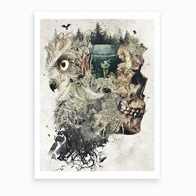 Forest Lake Dreamer Art Print