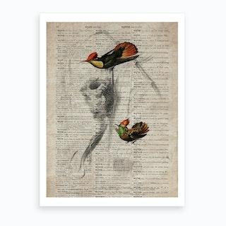 Tufted Neck Humming Bird Dictionnaire Universel Dhistoire Naturelle  Art Print