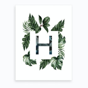 Botanical Alphabet H Art Print