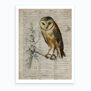 Owl Dictionnaire Universel Dhistoire Naturelle  Art Print