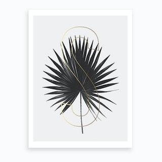 Abc Plant S Art Print
