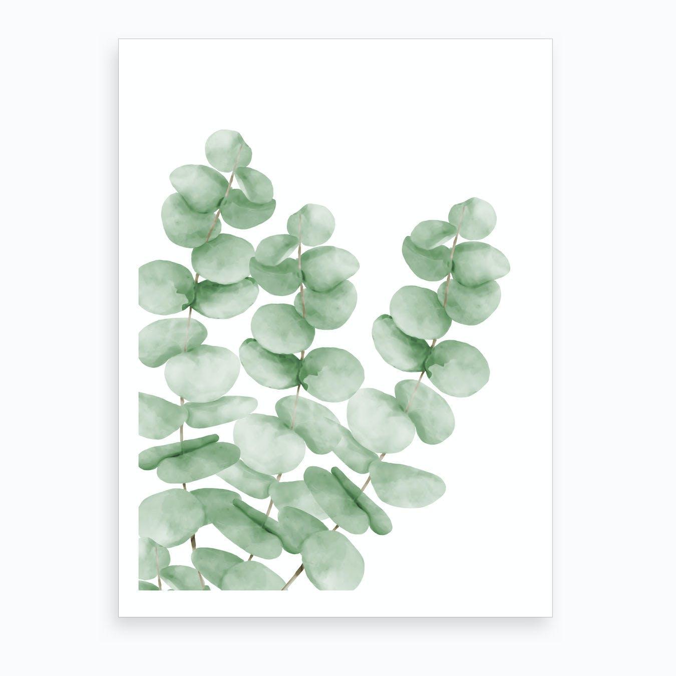 Watercolor Eucalyptus Leaves Art Print