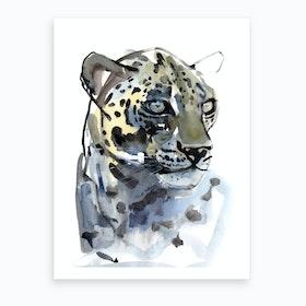 Arabian Leopard I