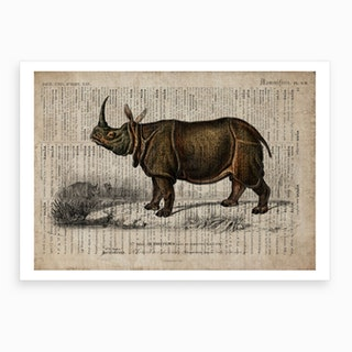 Rhino Dictionnaire Universel D Histoire Naturelle Art Print