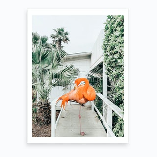 Flamingo Beach House Art Print