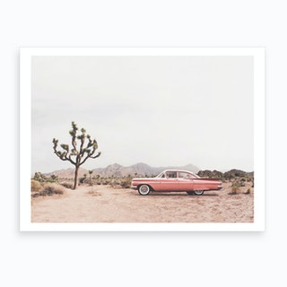 In The Desert Art Print