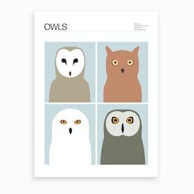Four Owls Art Print