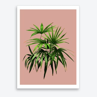 Palmen Pink Art Print