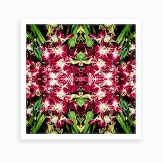 Ruby Reds Art Print