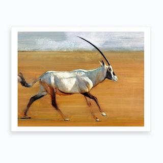Galloping Oryx