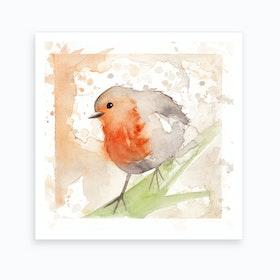 Robin Bird 3 Art Print