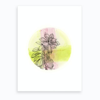 Succulent On Pink And Green Art Print