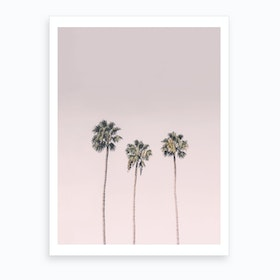 Blushing Palms Art Print