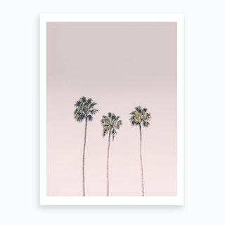 Blushing Palms Art Print