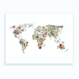 Vintage Botanical World Art Print