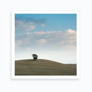 Lone Tuscan Tree Art Print