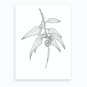 Ghost Gum Art Print