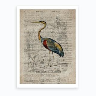 Heron Dictionnaire Universel Dhistoire Naturelle  Art Print