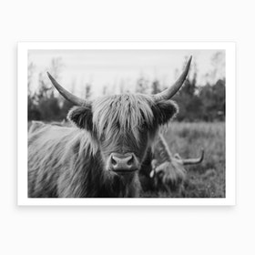 Highland Horse Black And White Art Print