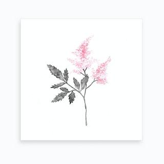 Lilac Flowers2 Art Print