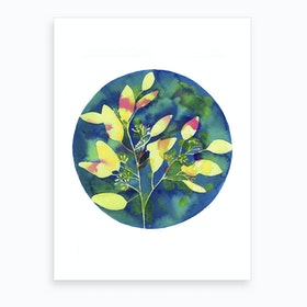 Winter Eucalyptus Art Print
