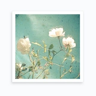 Flowers And Blue Art Print