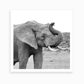 Happy Elephant Art Print