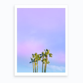 Summer Dreams With Palms Art Print